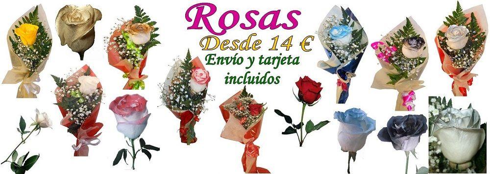 Enviar rosas a domicilio desde 14 euros