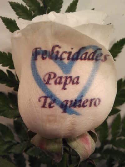 Rosa para el dia del padre